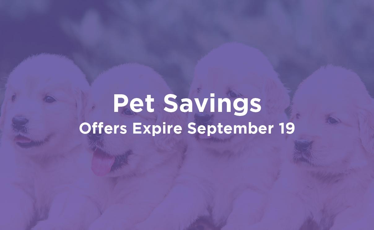 Pet Savings